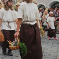 23-07-2015_Memminger-Kinderfest-2015_Umzug_Kuehnl_new-facts-eu0130