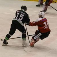 06-11-2015_Memmingen_Eishockey_Randale_Indians_ECDC_Hoechstadt_Polizei_Fuchs_new-facts-eu0018