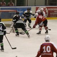 06-11-2015_Memmingen_Eishockey_Randale_Indians_ECDC_Hoechstadt_Polizei_Fuchs_new-facts-eu0031