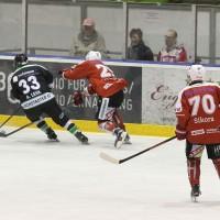 06-11-2015_Memmingen_Eishockey_Randale_Indians_ECDC_Hoechstadt_Polizei_Fuchs_new-facts-eu0032