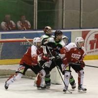 06-11-2015_Memmingen_Eishockey_Randale_Indians_ECDC_Hoechstadt_Polizei_Fuchs_new-facts-eu0035