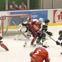 06-11-2015_Memmingen_Eishockey_Randale_Indians_ECDC_Hoechstadt_Polizei_Fuchs_new-facts-eu0036