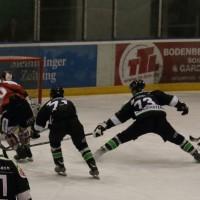06-11-2015_Memmingen_Eishockey_Randale_Indians_ECDC_Hoechstadt_Polizei_Fuchs_new-facts-eu0050