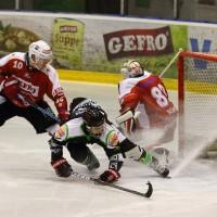 06-11-2015_Memmingen_Eishockey_Randale_Indians_ECDC_Hoechstadt_Polizei_Fuchs_new-facts-eu0054