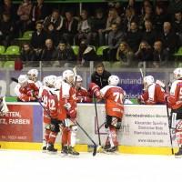 06-11-2015_Memmingen_Eishockey_Randale_Indians_ECDC_Hoechstadt_Polizei_Fuchs_new-facts-eu0067