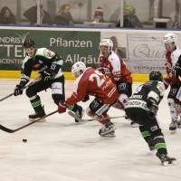 06-11-2015_Memmingen_Eishockey_Randale_Indians_ECDC_Hoechstadt_Polizei_Fuchs_new-facts-eu0073