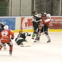 06-11-2015_Memmingen_Eishockey_Randale_Indians_ECDC_Hoechstadt_Polizei_Fuchs_new-facts-eu0077