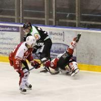 06-11-2015_Memmingen_Eishockey_Randale_Indians_ECDC_Hoechstadt_Polizei_Fuchs_new-facts-eu0078