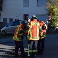 07-11-2015_Biberach_Gutenzell-uebung_Bauernhof-Brand_Feuerwehr_new-facts-eu0006