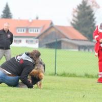 31-10-2015_Bayern_Oberallgaeu_BRK_Rettungshundestaffel_Eignungstest_Kuehnl_new-facts-eu017