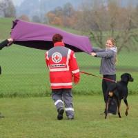 31-10-2015_Bayern_Oberallgaeu_BRK_Rettungshundestaffel_Eignungstest_Kuehnl_new-facts-eu042