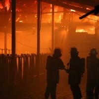 02-01-2016_Unterallgaeu_Gernstall_Mindelheim_Brand_Bauernhof_Feuerwehr_Poeppel_new-facts-eu0038