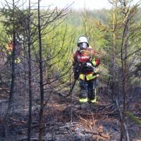 04-04-2016_Biberach_Tannheim_Rot_Waldbrand_Feuerwehr_Poppel20160404_0008
