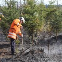 04-04-2016_Biberach_Tannheim_Rot_Waldbrand_Feuerwehr_Poppel20160404_0042
