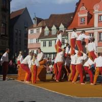 17-06-2016_Memmingen_Wallenstein-Sommer-2016_Auftakt_Fischertagsverein_Kuehnl0578