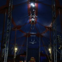 19-08-2016_Memmingen_CIRCUS-KRONE_Tierschau_Circus-Baby_Seehunde_Poeppel_0189