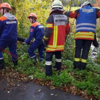2017-10-06_Unterallgaeu_Zell_Jugend_Feuerwehr_THW_BRK_JUH_Uebung_Feuerwehr-Zell_new-facts-eu_0075