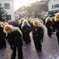 2018-01-21_Erolzheim_Narrenzunft_Deifel-weib_Narrensprung_Poeppel_0010