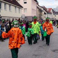 2018-02-04_Altenstadt-Iller_Faschingsumzug_2018_Poeppel_0245