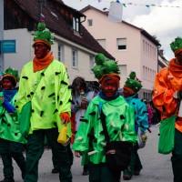 2018-02-04_Altenstadt-Iller_Faschingsumzug_2018_Poeppel_0246