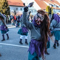 2018-02-13_Kirchdorf_Kehraus_Narrensprung_Poeppel_0090