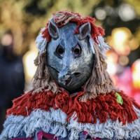 2018-02-13_Kirchdorf_Kehraus_Narrensprung_Poeppel_0608