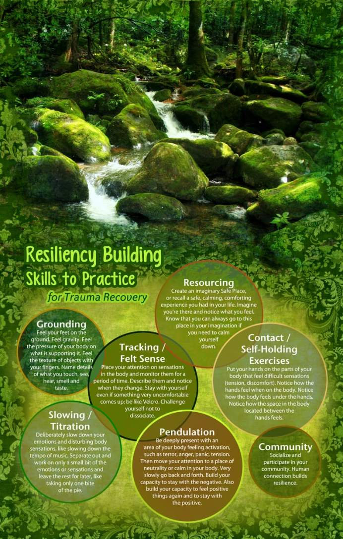 stream in forest with 10 resiliency building skills to practice for trauma