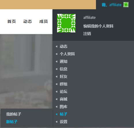 编写推广帖子 4