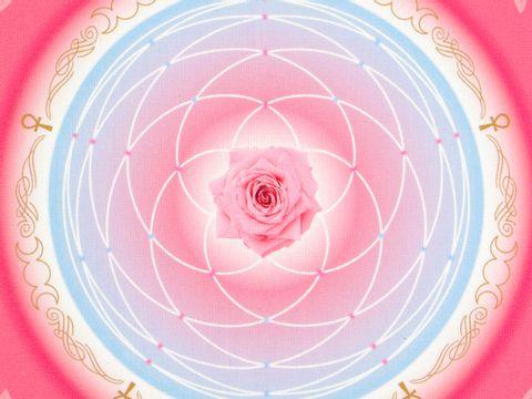超光速粒子金星玫瑰能量布 30 cm 4
