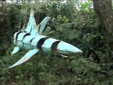 Shark by Michael Chaikin