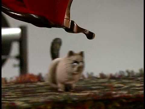Margot's Cat by Arthur Ganson
