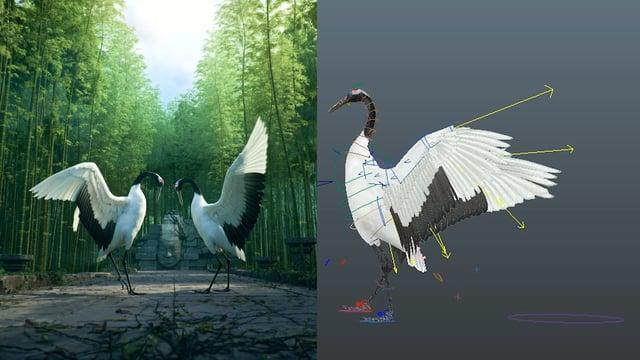 Dancing with Cranes by Revolution Studio