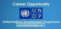 United Nations Development Programme (UNDP) job