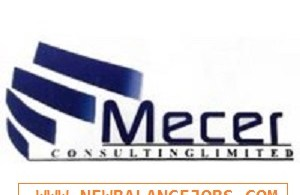 Mecer Consulting Limited Recruitment