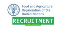 Food and Agriculture Organization of the United Nations (FAO-UN) Recruitment