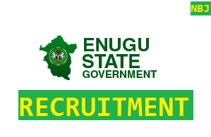 Enugu State Government (enugustate.gov.ng) Recruitment