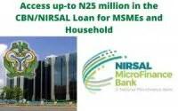 AGSMEIS loan portal