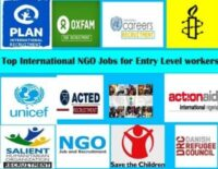International NGO Jobs for Entry Level workers