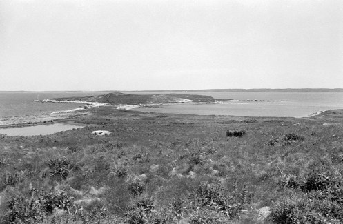 The southeastern tip of Penikese Island, a state-protected, wildlife sanctuary for birds, shows the weeded terrain and a fresh water pond. On the horizon, Nashawena Island can be seen. Photo by Joseph D. Thomas