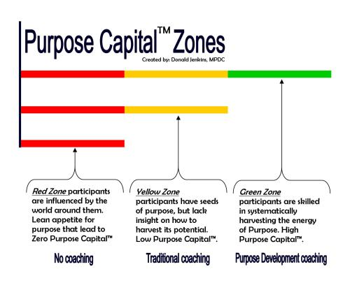 PurposeZones2