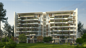 New Capital City Real Estates