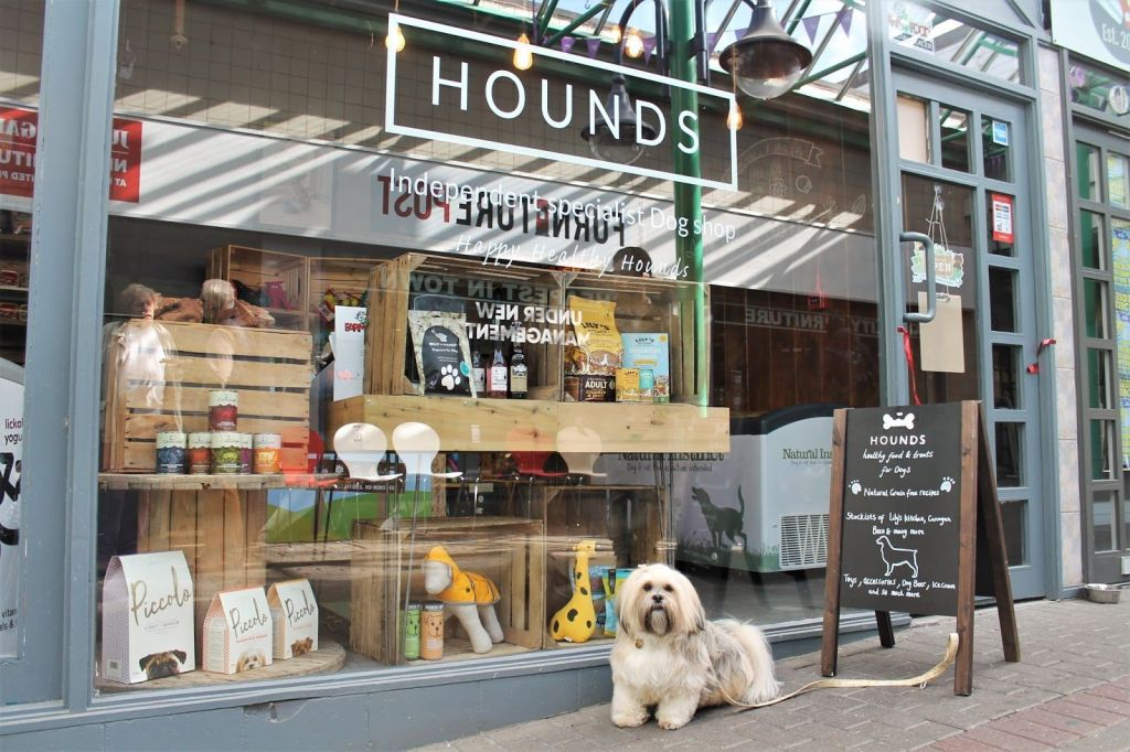 Hounds Newcastle Under Lyme