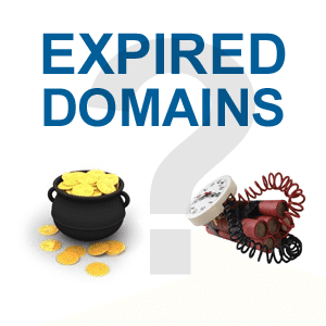 Good Expired Domain