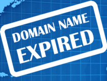 How to Invest in Expired Domains?