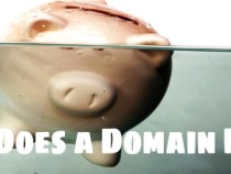 The Cost Of Domain Name – 3 Things to Consider !