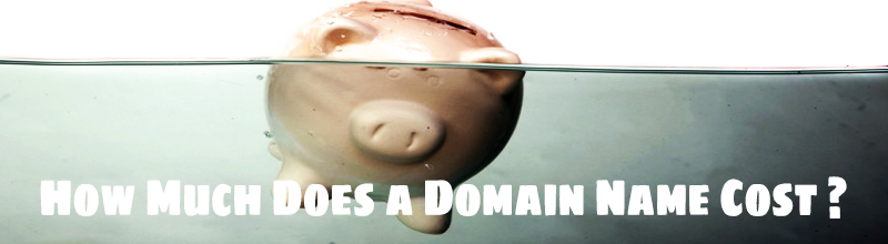 The Cost Of Domain Name - 3 Things to Consider !