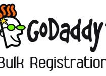 GoDaddy Bulk Registration Review