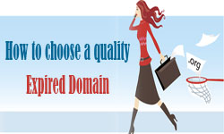 How to choose a quality expired domain on thumbnail