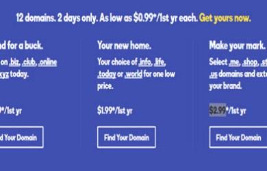 godaddy domains 99 cent flash sale