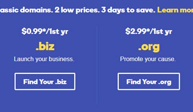 godaddy biz org info co domain on sale